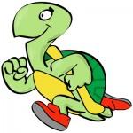 tartaruga icona